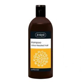 Xampú para cabelo tinxido